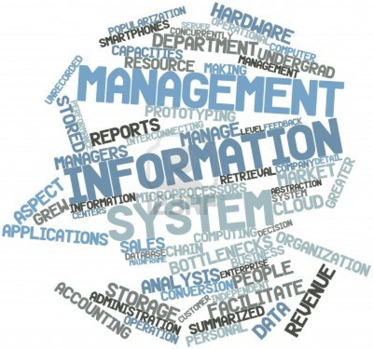 a management information system mis Article shared by:  this article provides an overview on management information system (mis) information system: it is a system which provides each manager in the organisation with the information he needs in order to take decisions, plan and control within his area of responsibility.